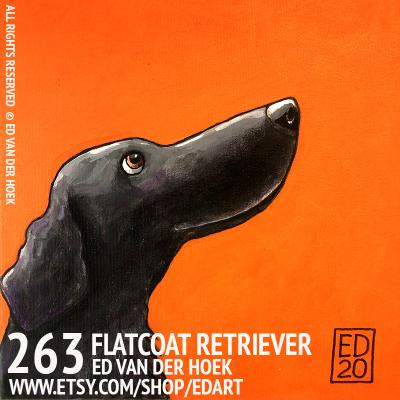 263 Flatcoat Retriever